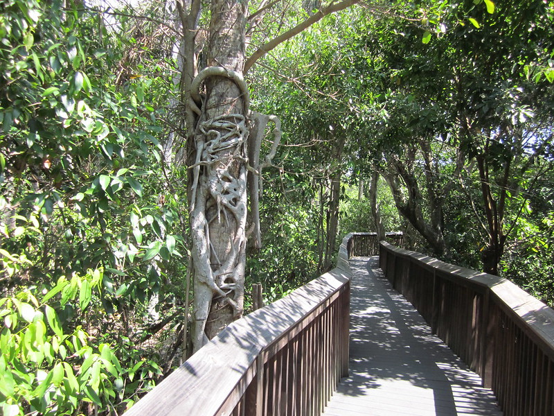 Daggerwing Nature Center