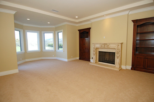 home living room with fireplace and alcove